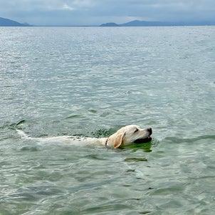 琵琶湖への画像