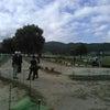 サンシャインカップ2020マレットゴルフ岡谷大会の画像