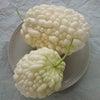 白い野菜の画像