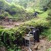 竹式傾斜土槽による生活排水の浄化システムが完成しました~♪の画像