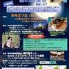 ◆ 第46回 譲渡会 参加猫 ⑦【しんば】【ごえもん】【花しょうぶ】【ジンジャー】の画像