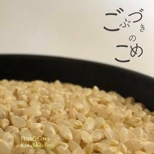 ふしぎな米びつの画像
