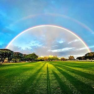 ~ハワイから愛をこめて~の画像