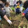 収穫祭の画像