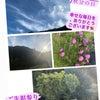 ◆エイジングケア感謝祭『ツヤ肌美肌菌エステ』の画像