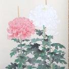 季節物の掛軸 内田逸郎「菊」のご紹介の記事より