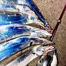 スローシャイナー太刀魚炸裂中★の記事より