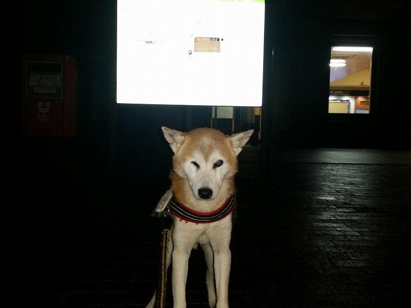 柴犬虎哲の部屋東北の旅:11月1日の8(記録記事)