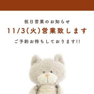 11月3日(祝)予約営業致します!の画像