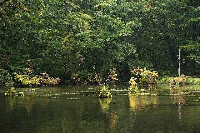 初秋・鈴沼   風景写真と福島かんたん滝めぐり
