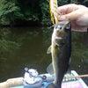 フローター最終釣行の画像