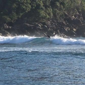 今朝の波とたけのはな、そして生見の懐かし映像、その他…
