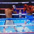 ルイス・ネリVSアーロン・アラメダ(WBCSバンタム級決定戦)