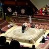 大相撲と宝塚☺️の画像