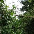 お隣りの畑に行って草刈り&虫取り網で虫退治。