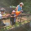 有馬温泉 夏休みの思い出の画像
