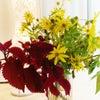 花があるとオンライン教室が楽しくなったの画像