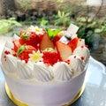 明日のいちごのケーキはお昼ごろからのご紹介となりそうです