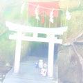 みあれ祭の日 福岡三社参りをしてきました