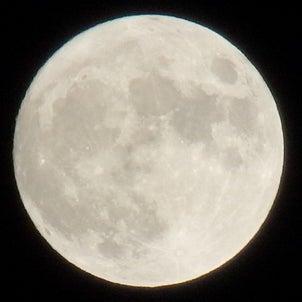 中秋の名月☆.。.:*・の画像