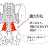 ✅ 動画【使える超人気手技!】腰方形筋(QL)ストレッチ!の画像