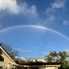 虹パワーの画像