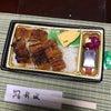 うなぎ弁当の画像