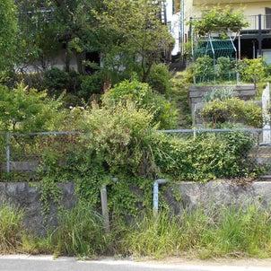 【施工事例】法面土留め工事の画像