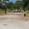 サンシャインカップ2020 マレットゴルフチャンピオン大会 in 松川村の画像