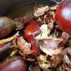 秋の味覚~栗の画像