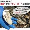 北海道仙鳳趾の特大サイズ入荷します!の画像