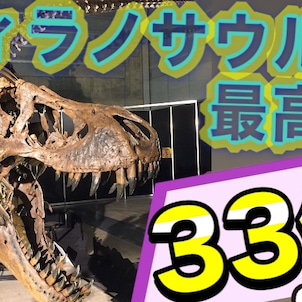 ティラノサウルススタンオークションの画像