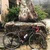 六甲山逆瀬川コース〜清荒神 55.4kmの画像