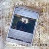 Netflix推し作品【連載東 紗友美の映画と暮らす】の画像