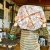 【 山の下のパン屋 】の画像