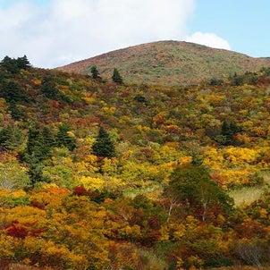 恋しい秋の山ガール旅【栗駒山須川コース】の画像