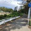 千里川オンロードラン 10kmの画像