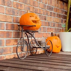 秋ですねの画像