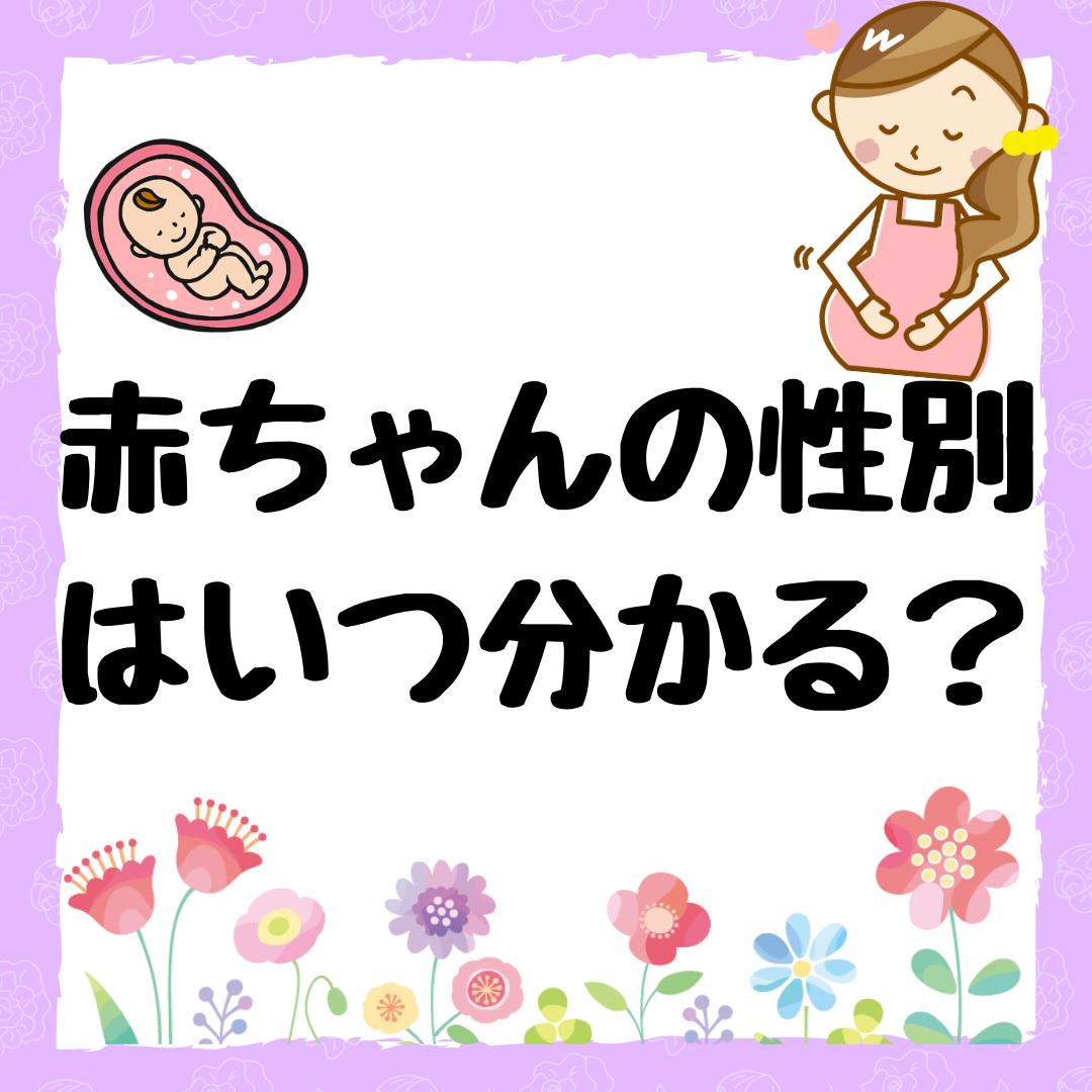 わかる 時期 性別 妊娠