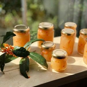 庭の金木犀花と香りを小さな瓶に詰めました、「Hozu ままや」の新しいWeb0サ...の画像