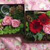 三原庭園にての画像