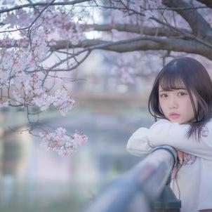【まとめ】2020.3/21さくらフォト@名古屋の画像