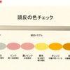 頭皮の色診断の画像