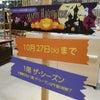 川西阪急百貨店1階 ザ・シーズンに出店しております!の画像