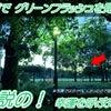 伝説の幸運を呼ぶ緑の光☆グリーンフラッシュ(green flash)早朝の綾瀬東公園で見た!ワォの画像