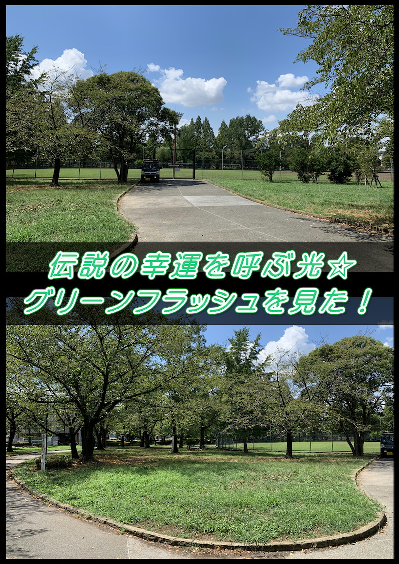 伝説の!幸運を呼ぶ緑の光☆グリーンフラッシュ(green flash)早朝の綾瀬東公園で観た!4