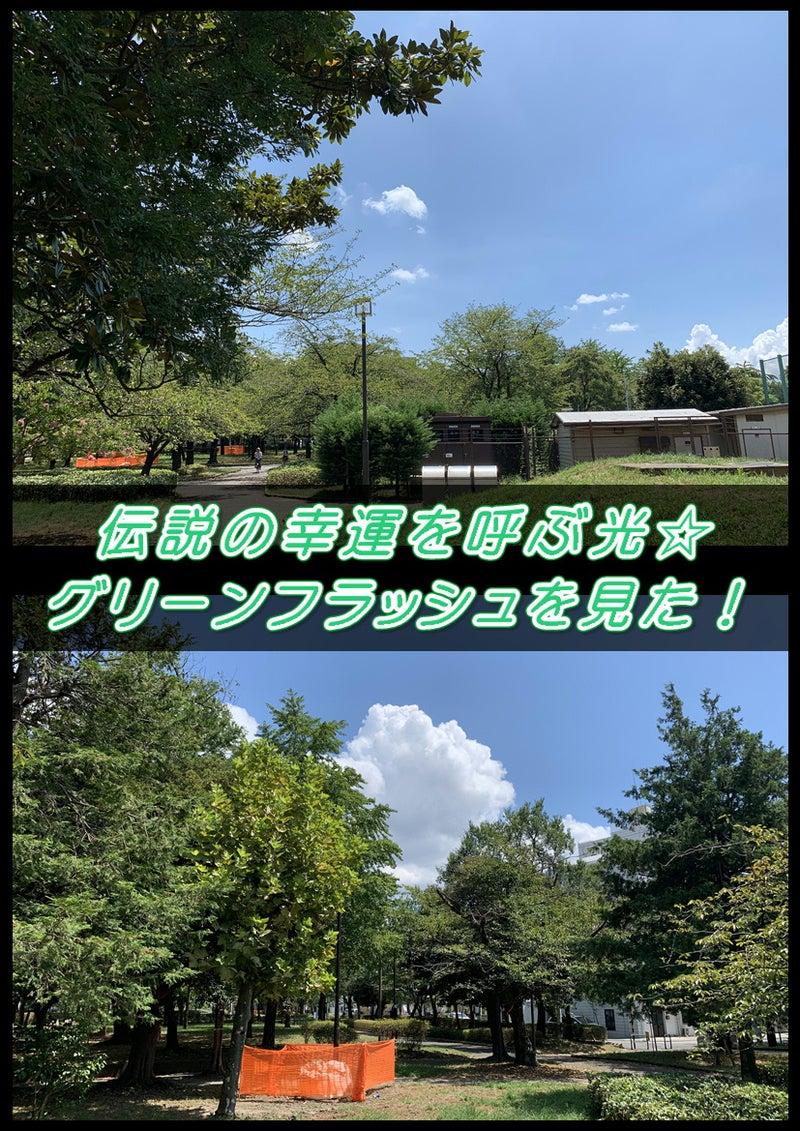 伝説の!幸運を呼ぶ緑の光☆グリーンフラッシュ(green flash)早朝の綾瀬東公園で観た!2