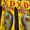 10XDの画像