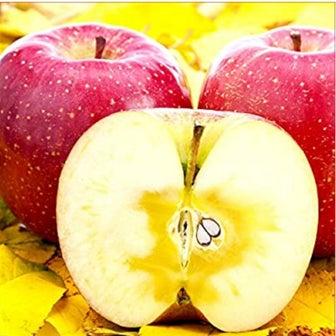 2kg〜10kg重さが選べるりんごが50%OFF!
