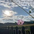 『日々  断捨離』で空間と心を整え人生を輝かせよう!断捨離®トレーナー中村レイコ